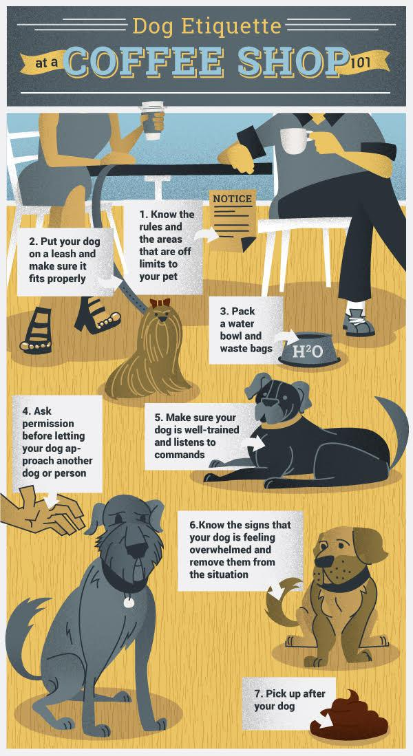 Dog Etiquette at a Coffee Shop