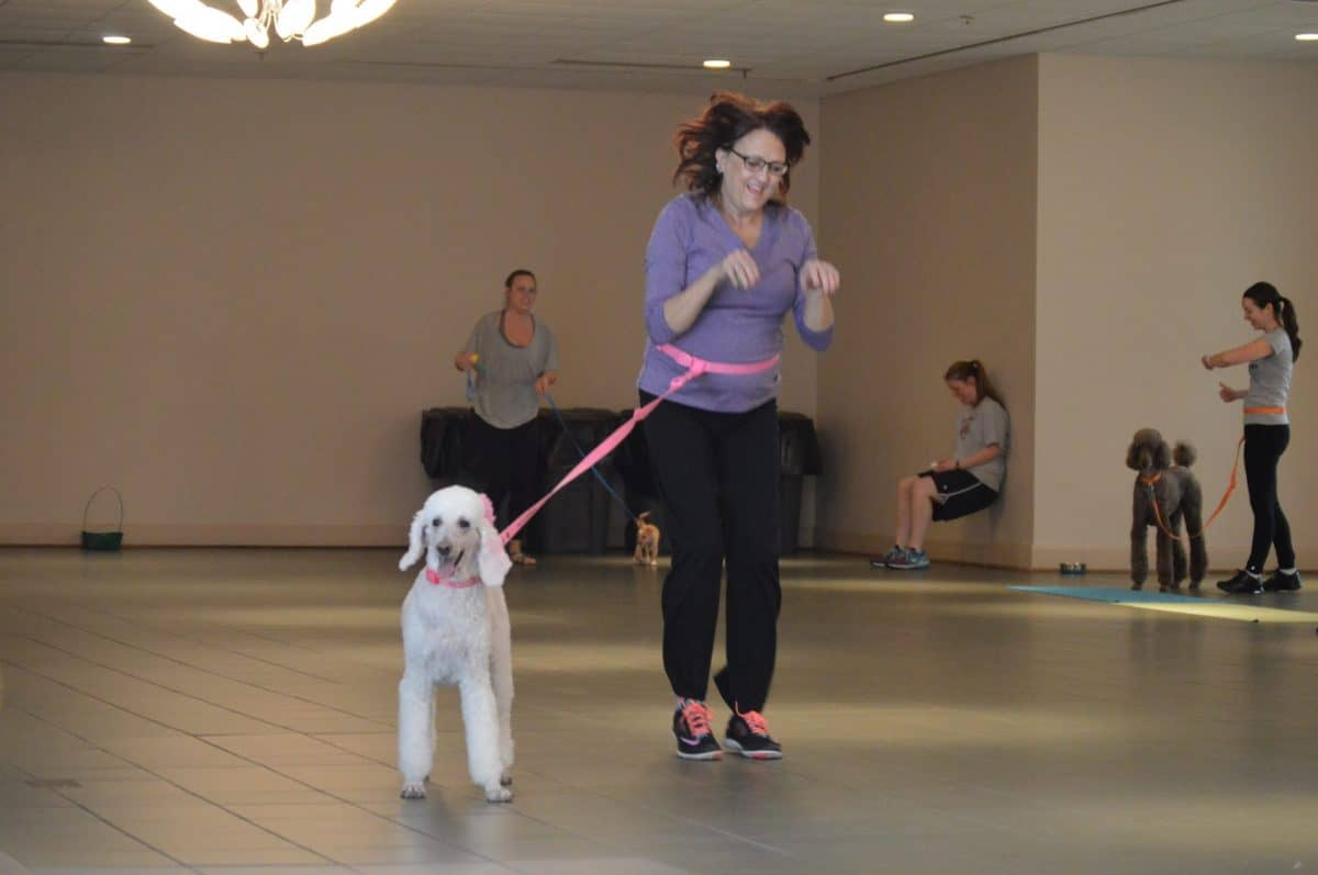 Fitness with Fido Class