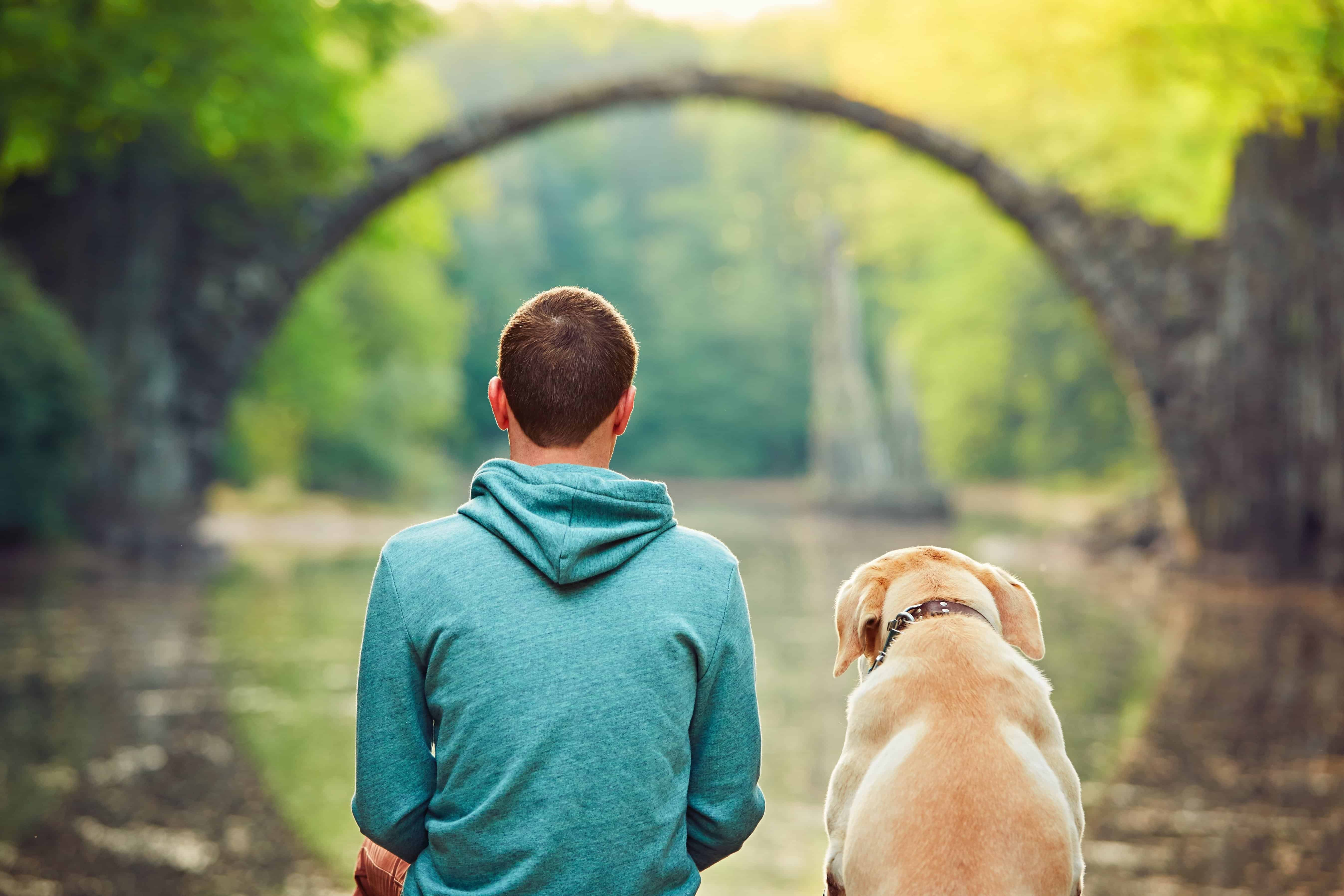 What your dog can teach you about yourself