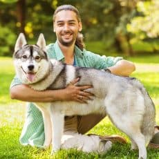Why Attend A Dog Trainer School?