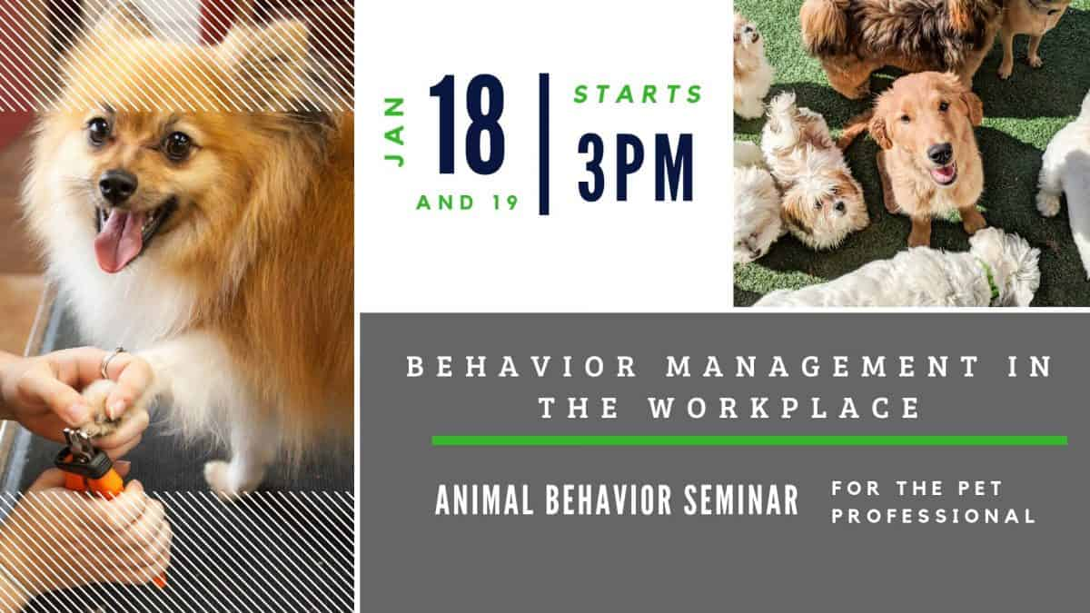 Behavior Management In The Workplace Seminar