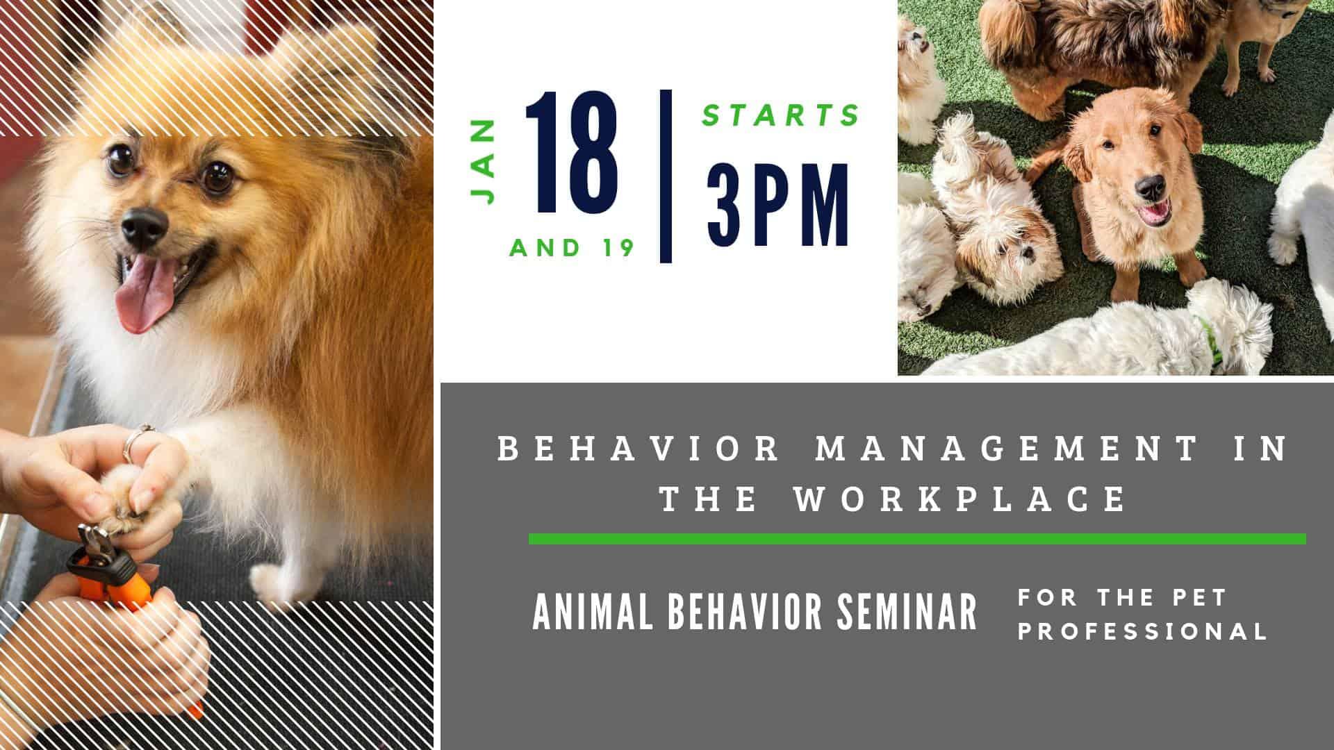 Behavior Management In The Workplace Seminar