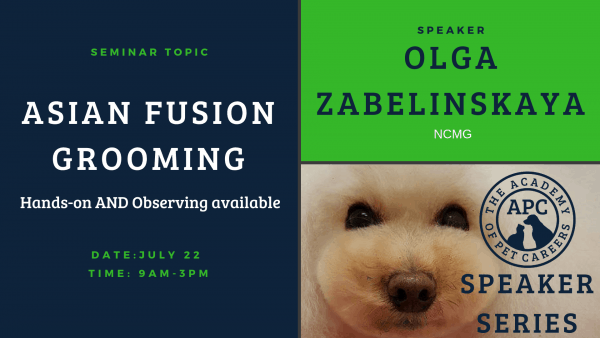 Olga Zabelinskaya Asian Fusion Grooming Event Image