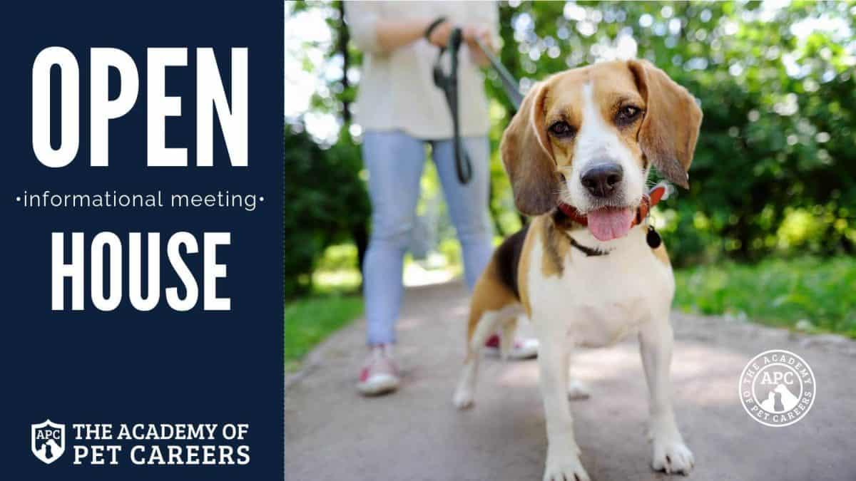 Pet Career School Open House, The Academy of Pet Careers