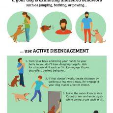 Active Disengagement