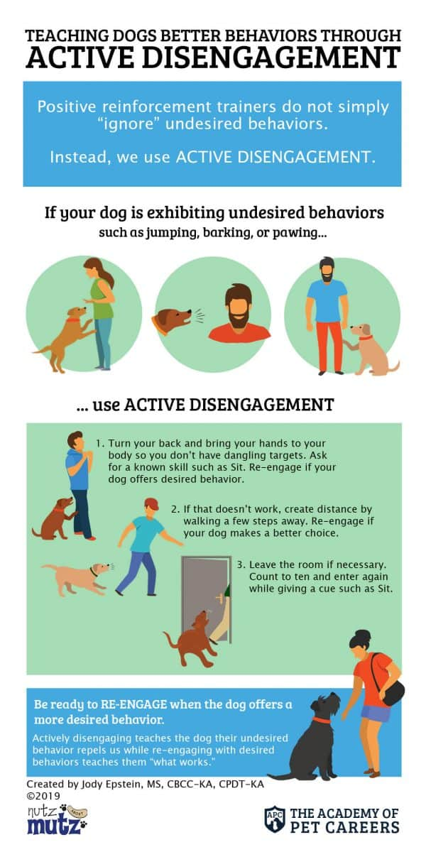 Active Disengagement InfoGraphic, The Academy of Pet Careers