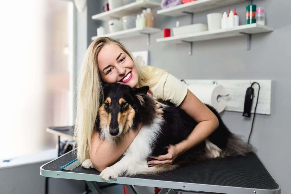 Longevity Of Your Grooming Career Image, The Academy of Pet Careers