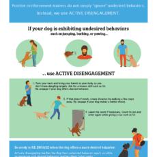 Active Disengagement Infographic