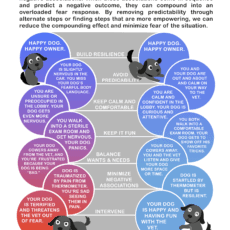 Sequential Overload in Pets Infographic