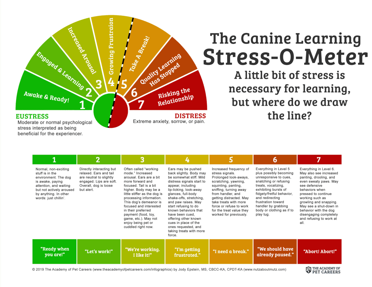 The Canine Learning Stress-O-Meter Infographic